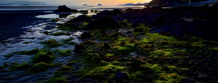 瀬戸内海イメージ写真