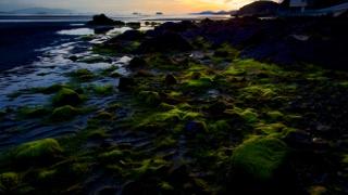 瀬戸内海 Seto Inland Sea イメージ